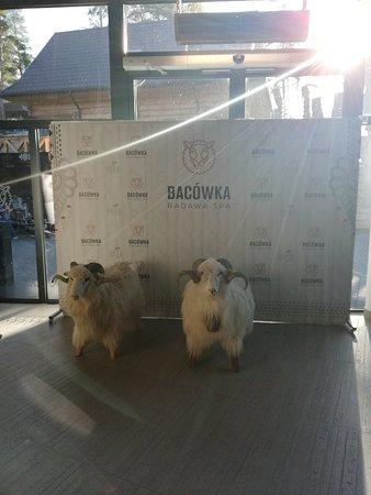 Radawa – fénykép