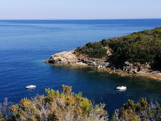 Punta Buzzancone