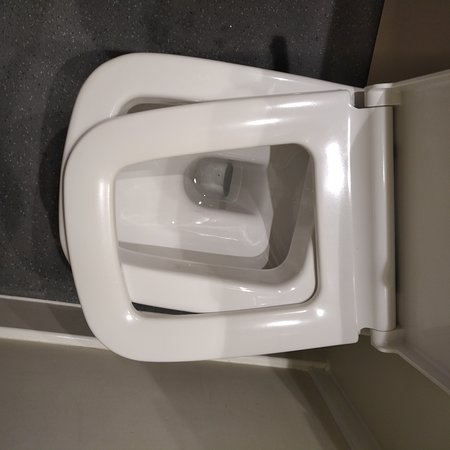 Gamston, UK: Interesting toilet seat.