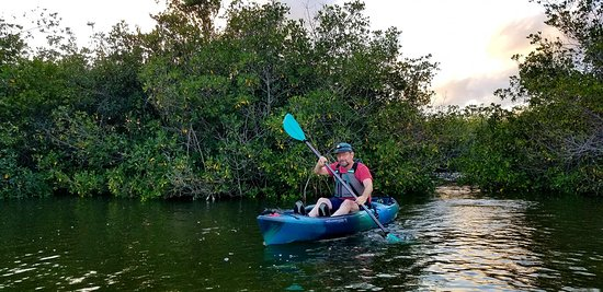 Kayak through our lagoon in the Thousand Islands of Cocoa Beach, Florida! Book your tour today at www.cocoakayaking.com and/or call for more information at 808.798.6630!