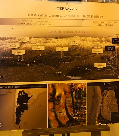 Bodega Terrazas de los Andes