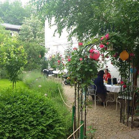 Magic garden  One Tea house, five different worlds...