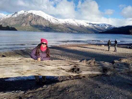 San Carlos de Bariloche, Argentinien: Un tronco en la playa del lago Gutierrez