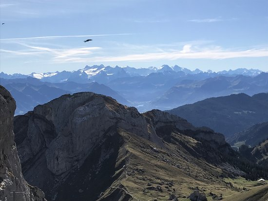 Mount Pilatus Summer Day Trip from Lucerne: View from Mount Pilatus