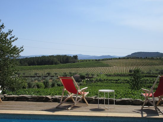 Douro Valley Wine Tour: Visit to Three Vineyards with Wine Tastings and Lunch: Sabrosa winery