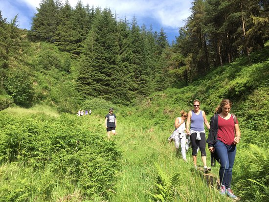 Eagles Rock Retreat to Ravensdale guided walk