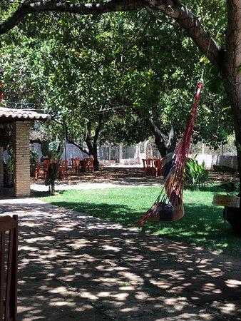 Bilde fra Campo Maior