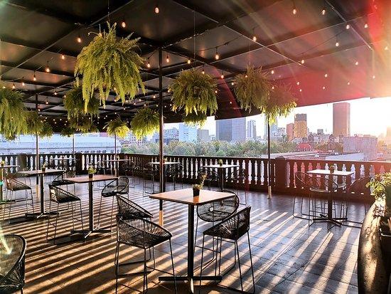 Los Fridos Cafe Mexico City Restaurant Reviews Photos