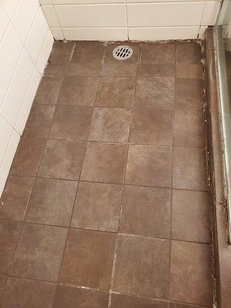 The shower floor