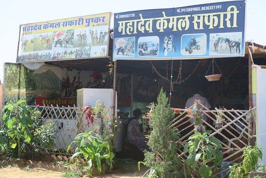 Mahadev Camel Safari