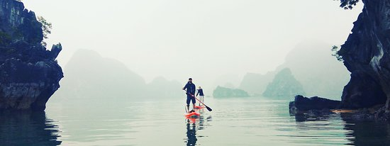 Stand up paddle board - Blue Swimmer Adventures