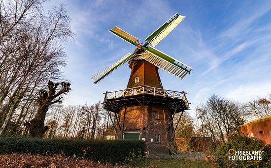 Grossheide, Alemania: Historische, Ostfriesische Windmühlen
