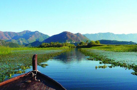 Область Шкодер, Албания: 💧Lake Skadar ,Albanian: Liqeni i Shkodrës, pronounced [liˈcɛni i ˈʃkɔdrəs]) — also called Lake Scutari,lies on the border of Albania and Montenegro, and is the largest lake in Southern Europe. It is named after the city of Shkodër in northern Albania,Shkodra. 🎋 It is a karst lake.One of the most beatiful you may ever seen. Located in Shkodra city,in northwestern Albania its the heart of the city.  🌅🌙Quite,peaceful and delicate sunsets will sway in your being. Its a romantic venue for a walk,