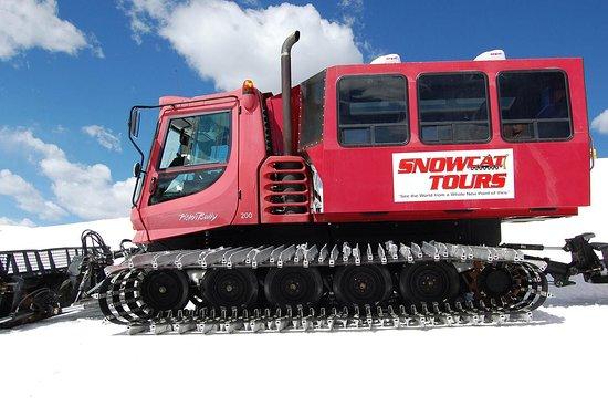 Scenic Snowcat Tour