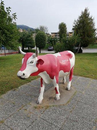 mucca rossa