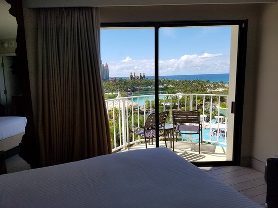 View from Coral room