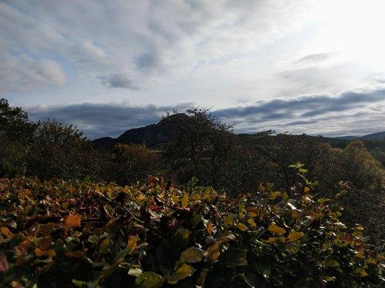 Bilde fra Whitebridge