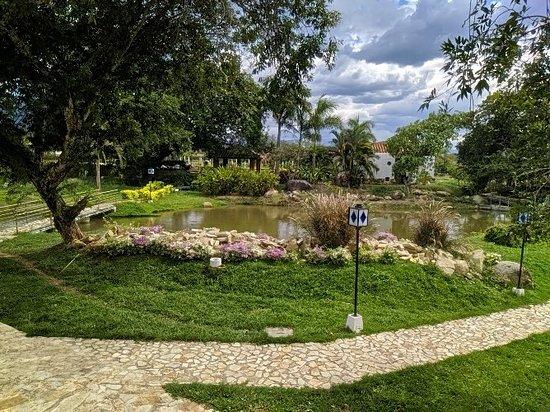 Bilde fra Campoalegre