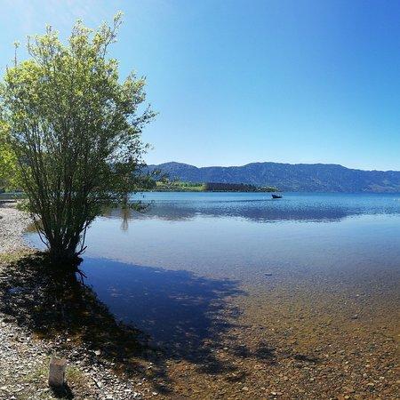 Los Lagos, Chili: Lago Riñihue ideal para toda la familia, facil acceso, seguro limpio y muy tranquilo.