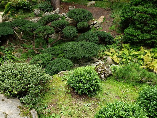 Albert Kahn Garden Picture Of Albert Kahn Musee Et Jardins