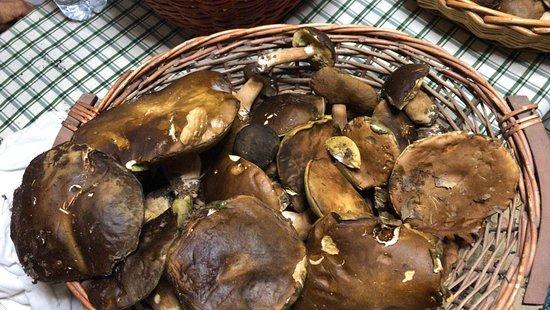 Paciano, Italia: Funghi porcini