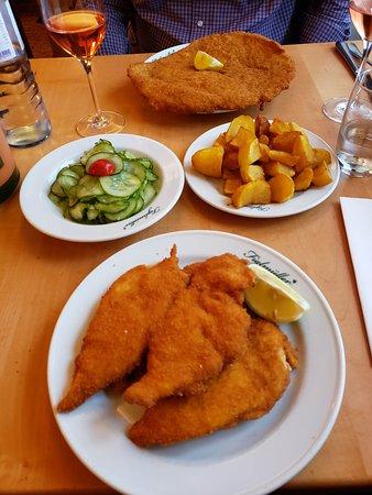 Pork schnitzel, chicken schnitzel, cucumber salad and potatoes