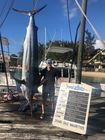 A dream come true..Black Marlin 330lb
