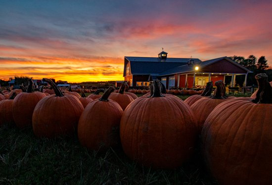Penfield, Estado de Nueva York: Fall sunset at Wickham Farms