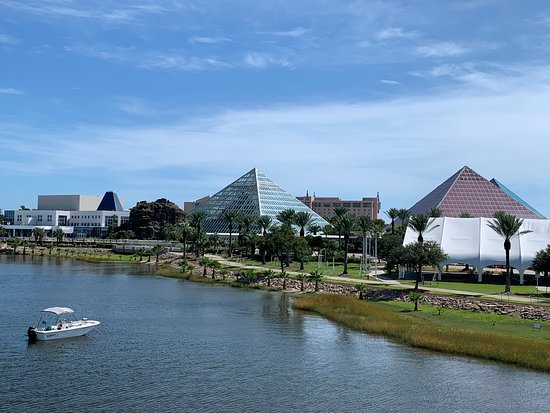 Moody Gardens Galveston 2019 All You Need To Know