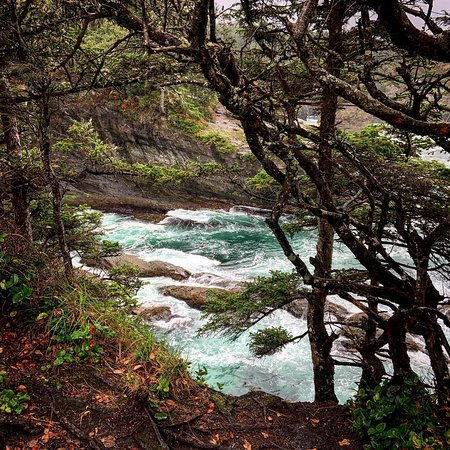Enchanted hike through the woods to beautiful views of the ocean.