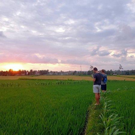 Tereng willis terrace and lombok panorama walk