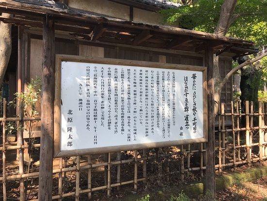 Shiensosha