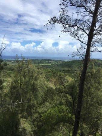 Valokuva: Zipline Tour On Oahu's North Shore