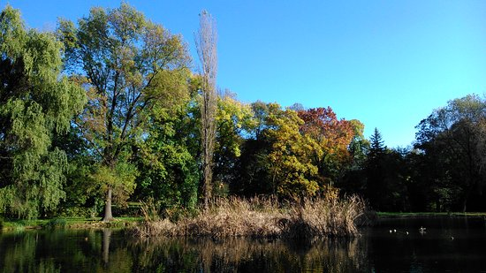 Topolcany, Slowakije: Park v októbri 3