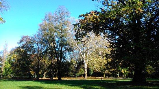 Topolcany, Slowakije: Park v októbri 5