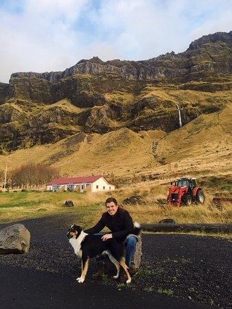 Fun dog and fabulous scenery