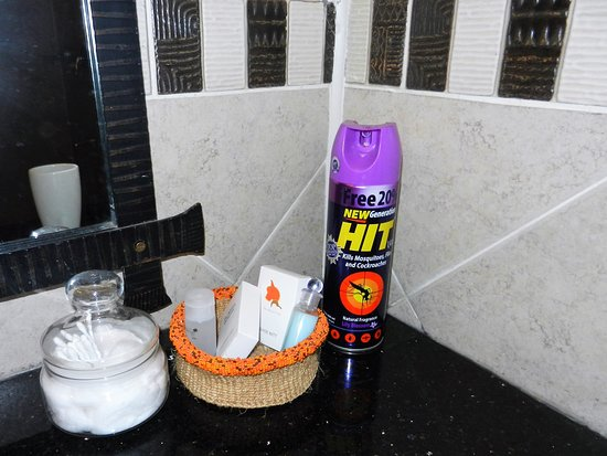 amenities, including insect spray