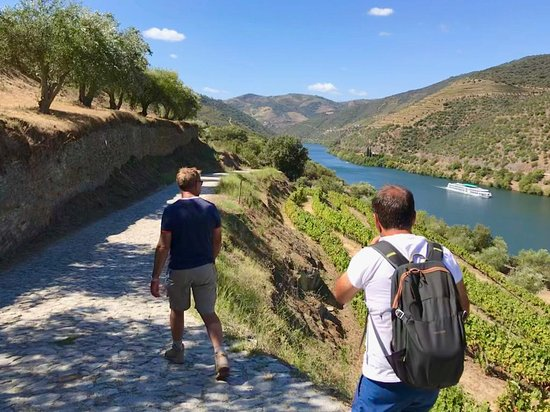 Douro Walks