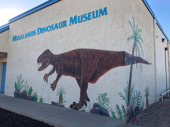 Mesalands Community College's Dinosaur Museum and Natural Sciences Laboratory