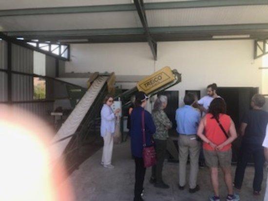 Casabermeja, Spanje: Outside olive processing building