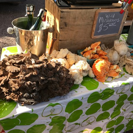 Wild mushrooms from Windfall Orchard