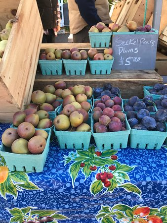 Plums from Windfall Orchard