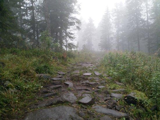 Kachkanar, Oroszország: дорога к храму