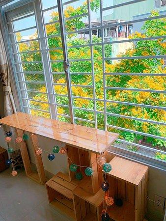 Mùa hoa Sưa nhìn qua cửa sổ