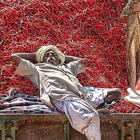 Turkije: Vendita peperoncini piccanti