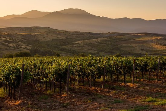Rupite & Heraclea Sintica Tours + Wine Tasting & Lunch at Rupel Winery