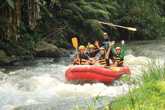 Ubud White Water Rafting