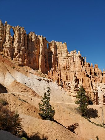 Hoodoos from the canyon floor