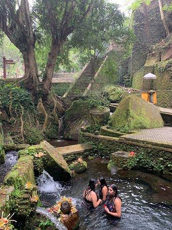 I migliori tour di Ubud: cascata, terrazze di riso e foresta delle scimmie: water purification ritual - quiet and tourist free!