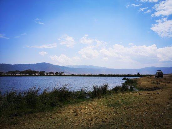 Ngorongoro, Tanzania: Vue de l'aire de pique nique